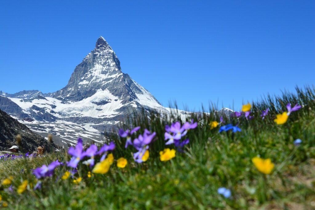 Visit in Switzerland